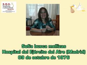 Sofía Ruiz cuadro