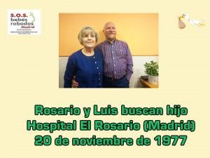 Rosario y Luis Vega cuadro